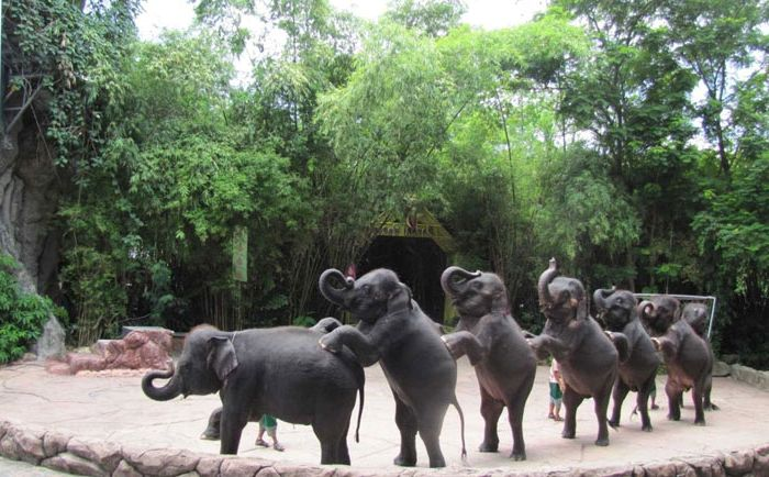 Отдых на Фукуоке - сафари парк Vinpearl Safari Phu Quoc, зоопарк, шоу животных